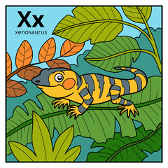 Color alphabet for children, letter X (xenosaurus)