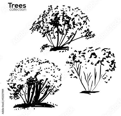 trees collection ink trees silhouettes stock image and royalty Cheap Ink Free Shipping ink trees silhouettes