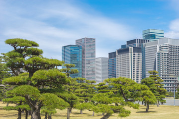 The balance between business and nature. There are tall buildings, a workplace and a park as a resting place.
