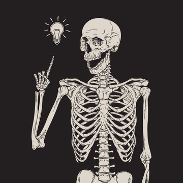 Human skeleton has an idea isolated over black background vector illustration