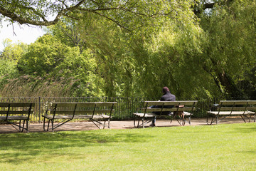 Solitude. A man dressed warmly sits on a wooden bench and reads a book in a park. It may be a concept of loneliness in the city.