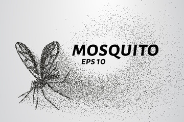 The mosquito of the particles. The mosquito consists of small circles and dots. Vector illustration.
