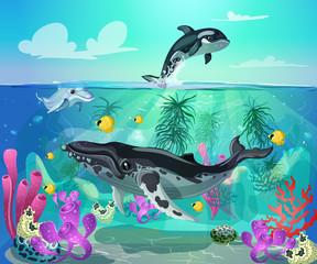 Keuken foto achterwand Onderzeeer Cartoon Colorful Sea Life Background