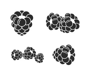 Blackberry. Icon set. Fresh berries on white background