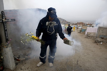 A health worker empties a makeshift flower vase while searching for mosquito larvae as part of preventive measures against the Zika virus and other mosquito-borne diseases at the cemetery of Carabayllo on the outskirts of Lima