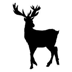 pictogram deer big antlers, wildlife poster. graphic sketch vector illustration