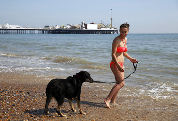 Student Lotte Carlevach walks dog Keira in the sunny weather on Brighton beach in southern England