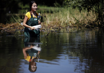 A South Korean television reporter does a report standing in the water near the Sam Wa flood gate in Bangkok