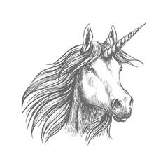 Unicorn horse animal vector sketch