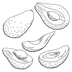 Avocado fruit graphic black white isolated sketch illustration vector