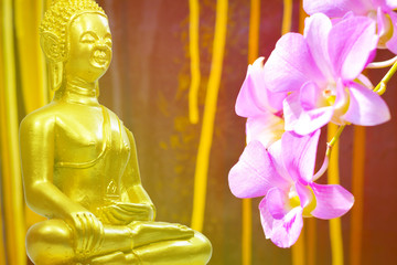 Buddhism statue ,field of flower and sun in morning