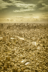 Tokyo skyline, aerial view, Japan. Yellow tone