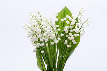 Foto auf Leinwand Maiglöckchen Lily of the Valley (Convallaria Majalis) isolated on white