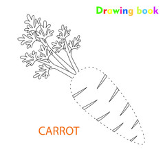 Carrot coloring and drawing book vegetable design illustration