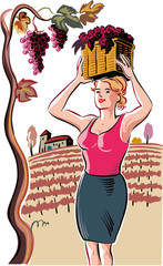 Young woman with a basket filled with freshly picked ripe grapes in the vineyard.
