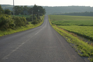 road with field