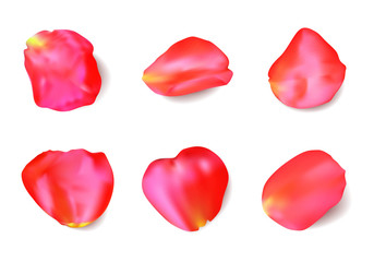 Red rose petals set. Realistic vector