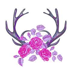Horns with rose flowers. Design element with deer antlers and roses on white background. Hand drawn boho chic style