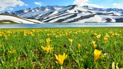 Muhteşem Doğa Harikası Dağ