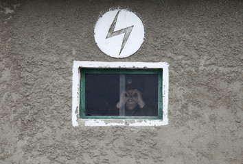 A North Korean soldier looks out of the window of a guard tower, on the banks of Yalu River, about 100 km from Sinuiju