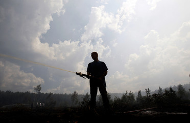 A firefighter works to extinguish a peat fire in a forest near the town of Shatura