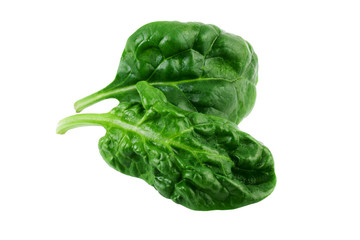 Spinach leaves isolated