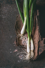 Fresh organic ripe young green spring onion bundle with leaves and pink salt on wooden bark over dark metal texture background. Top view with space