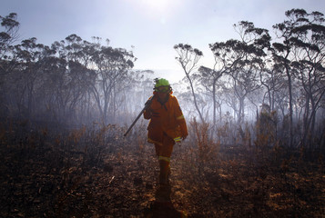 RFS firefighter walks through a burnt area after trying to extinguish a small fire approaching homes near Blackheath