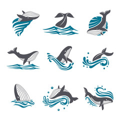 Whale among sea waves and splashes vector icon set