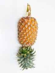 yellow pineapple on white