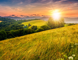 countryside summer landscape with field, forest and mountain ridge at sunset