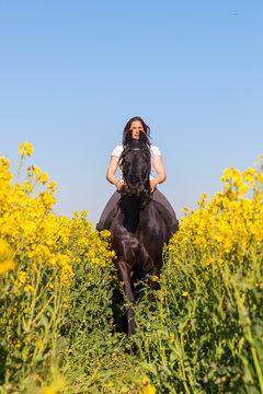 woman riding a Friesian horse
