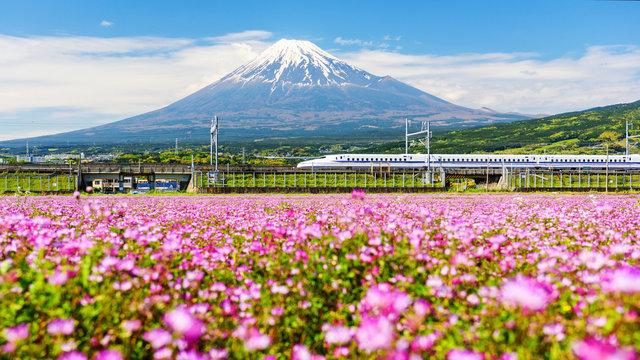Shinkanzen run pass Mt. Fuji
