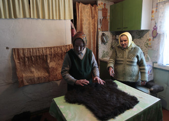 Liashkevich and Kurets process homemade valenki, a traditional footwear made of raw wool, at a house in the village of Starinki