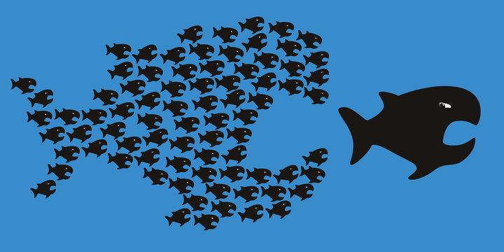 poisson - symbole - chaine - unité - force - union - concept - organisation - équipe
