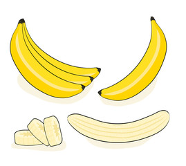 Vector banana. Bunches of fresh banana fruits isolated on white background, collection of vector illustrations in pop art retro comic style