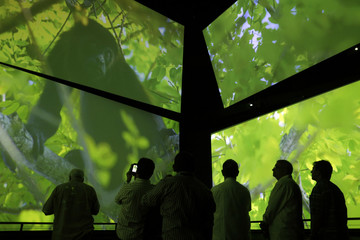 Visitors look at screens showing a monkey, part of the biodiversity in Panama, at one of the permanent exhibitions at the Biomuseo in Panama City