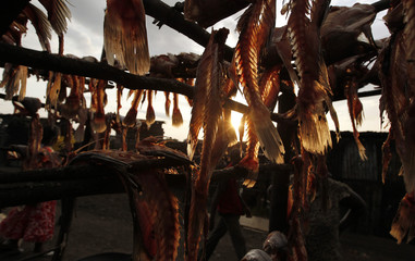 "Fish skeletons are dried on wooden poles at the Obunga ""mgongo-wazi"" fish frying market in Kisumu"