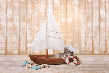 Cute Kitten in a Sailboat With Ocean Theme