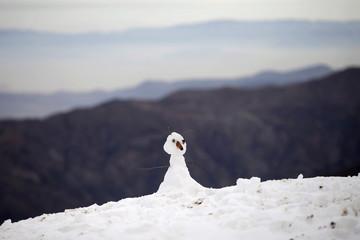 A snowman is seen at the El Colorado ski centre at Los Andes Mountain range, near Santiago