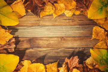 beautiful wooden background with autumn leaves