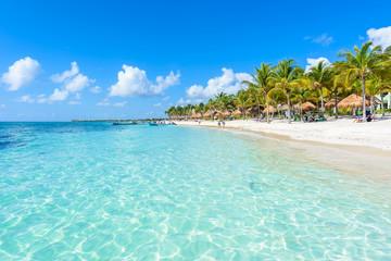 Canvas Prints Green coral Akumal beach - paradise bay Beach in Quintana Roo, Mexiko - caribbean coast