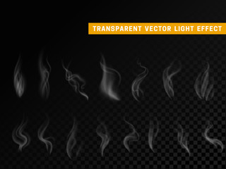 Smoke effect realistic isolated. Transparent background vector illustration
