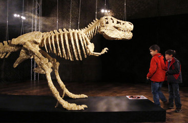 """Visitors look at the art work titled """"Dinosaur Skeleton"""" during """"The Art of the Brick"""" exhibition in Brussels"""