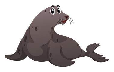 Gray seal on white background