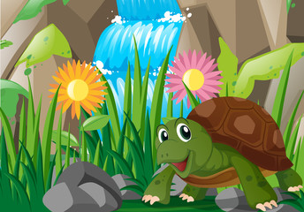 Turtle by the waterfall