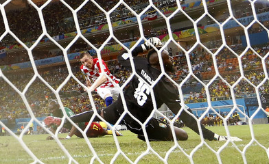 Croatia's Ivica Olic scores a goal past Cameroon's goalkeeper Charles Itandje during their 2014 World Cup Group A soccer match at the Amazonia arena