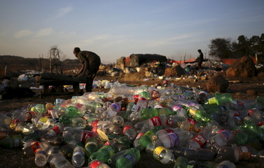 An unemployed man sorts out recyclable waste material in front of plastic soft drink bottles which he sells for a living, in Daveland near Soweto,