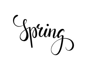 Hello Spring. Hand drawn calligraphy and brush pen lettering.