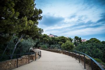 Pathway in Barcelona Park